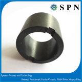 De Ring van de Magneet van het ferriet met de Droge Technologie van de Pers voor de Rotor van de Motor