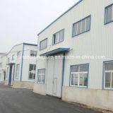 Taller caliente y almacén de la estructura de acero de la alta calidad del bajo costo de la venta