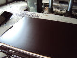 18mmの黒いフィルムは構築の構築の合板か具体的な型枠に直面した