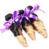 estensioni a spirale peruviane peruviane dei capelli di Ombre dei capelli umani del tessuto dell'arricciatura dei capelli 3PCS Ombre di tono dei capelli tre del Virgin dell'arricciatura della molla di 8A Ombre