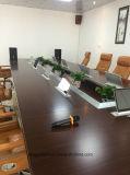 18.5inch ultra dünner LCD Aufzug mit Monitor