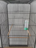 Superfície superior plana grande de metal do teto da gaiola de aves de gaiola, papagaio