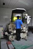 OEM de Componenten van de Vorm, Machinaal bewerkte Delen van de Precisie CNC, Pg Grinded Delen