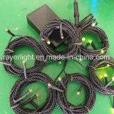 indicatore luminoso della stringa del giardino della lucciola di 6*3m per la decorazione dell'interno ed esterna