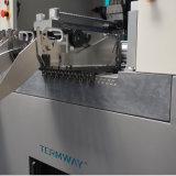 Heiße Auswahl des Verkaufs-LED und Platz-Maschine von Termway