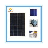 Comitato solare del silicone policristallino caldo di vendita 165W con il prezzo di fabbrica