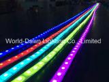 보장 3 년을%s 가진 LED RGB 지구 또는 테이프 빛