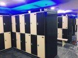 Het hete Verkopende Dubbele Kabinet van de Kast van de Opslag van Rijen (js38-2)