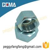 Amorçage métrique de noix en laiton pour l'ajustage de précision de Hydrauic, Nl/Ns