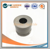 De Matrijzen van het carbide/de Stevige Matrijzen van het Smeedstuk van het Carbide Koude