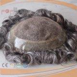 많은 뒤 레이스 정면 회색 혼합 색깔 남자의 Toupee (PPG-l-01696)