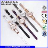 Lederne Brücke-Quarz-Frauen-Armbanduhr der Fabrik-OEM/ODM (Wy-103D)
