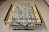 Marco de acero inoxidable de los muebles modernos de la sala de estar con la mesa de centro de 4 cajones de madera sólida