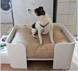 Base acrílica personalizada do animal de estimação da sala de estar do projeto