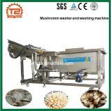 Chinese Manufacturing Mushroom Washer and Washing Machine