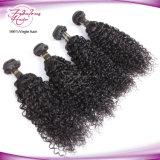 Fabrik-Preis heißes Remy Haar-Großverkauf-Inder-Haar 100%