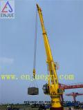 Articolazione idraulica del motore di Schang-Hai Enjue ed infilare la gru della nave