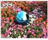 [120مّ] مرآة يصقل يحدّق قوس قزح [هولّوو سفر] [ستينلسّ ستيل بلّ] لأنّ لعب أو حديقة زخرفة