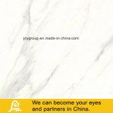 Glasig-glänzende volle Poliermarmorweiße Steinfliese 600*600mm Calacatta-Neu