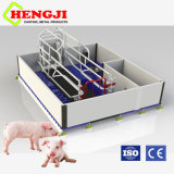 Multifunction Swine Farrowing Crates with Cast Iron Floor