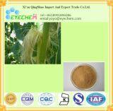 Cornsilkの有機性エキス/Cornsilk Powder/10: 1粒のCornsilkのエキスの粉
