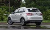 Automobile elettrica di alta qualità SUV con 5 sedi