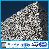 Gomma piuma di alluminio della parete del metallo per Contruction/costruzione/Camera