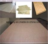 중국 제조자에서 경재 코어 합판 /Commercial 합판 /Construction 합판