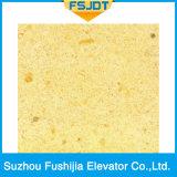 Ascenseur courant régulier de villa de passager de Fushijia