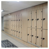 Seis armarios de almacenaje del bolso de golf de la puerta/armarios de la tarjeta dominante