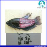 бирка рыб 134.2kHz Lf RFID стеклянная с животной микросхемой удостоверения личности