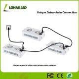 Las series 7-Band LED del reflector de la MAZORCA de las luces de la planta del poder más elevado 200W 400W 600W 900W LED crecen la luz