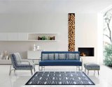 Insieme progettato della base di sofà del tessuto