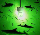 5400 lámpara subacuática del sumergible del señuelo del barco de noche de la lámpara de la pesca de los lúmenes 12V 60W LED