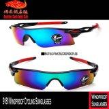 9181 lunettes de soleil de recyclage protégeant du vent
