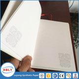 Het schrijven van of het Opstellen van het Notitieboekje van het Document van de Steen