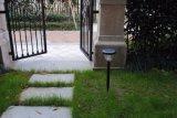 Indicatore luminoso solare della decorazione, indicatore luminoso solare del giardino, indicatore luminoso solare del prato inglese