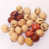 Köstliche gebratene überzogene Erdnüsse führten reinen Halal Ou