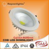 Europäisches Standard Aluminum 30W 8 Inch Recessed LED Down Light für Indoor