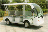 Il Ce ha approvato un bus facente un giro turistico elettrico delle 8 persone