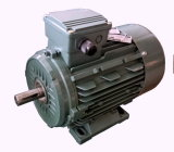 0.12kw - 200kw Tefc ACモーターIe2 Ie3