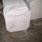Из полированного гранита мраморные плитки на пол и стены