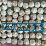 Buon Quality di Fresh cinese Pure White Garlic