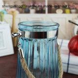 De in het groot Duidelijke Lange Vaas van de Vaas van het Glas voor de Decoratie van het Huis
