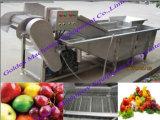 中国の野菜ポテトのにんじんの洗浄の皮の選別機のパッキング処理機械