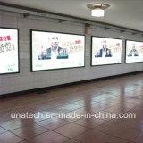 Signage гибкого трубопровода напольный/крытый стены держателя метро освещенный контржурным светом СИД пленки знамени светлой коробки