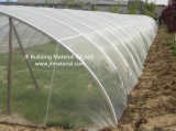 L'agriculture Maille anti insectes 20X10 Anti puceron Net
