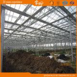Estufa de vidro bonita extensivamente usada da estrutura de Venlo