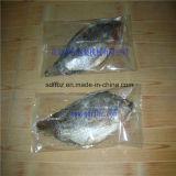 Автоматические, котор замерли продукты моря, рыба пропускают упаковывая машина