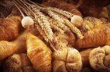 Matières grasses végétales de la poudre de haute qualité pour les produits de boulangerie et de la crème glacée